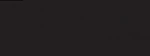 logo hokeja pasaule 2019