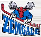 Zemgale LLU logo neliela izmēra balts png