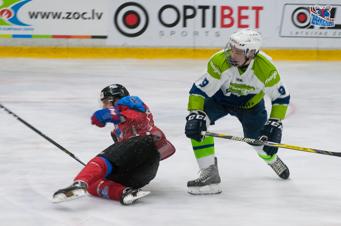 Jelgava – 11. oktobris: Mogo aizsargs Kārlis Gustavs Logins #9 ar spēka paņēmienu nogāž Zemgale/LLU uzbrucēju Raivi Kurniginu #13 Jelgavas ledus hallē 2017. gada 11. oktobrī.