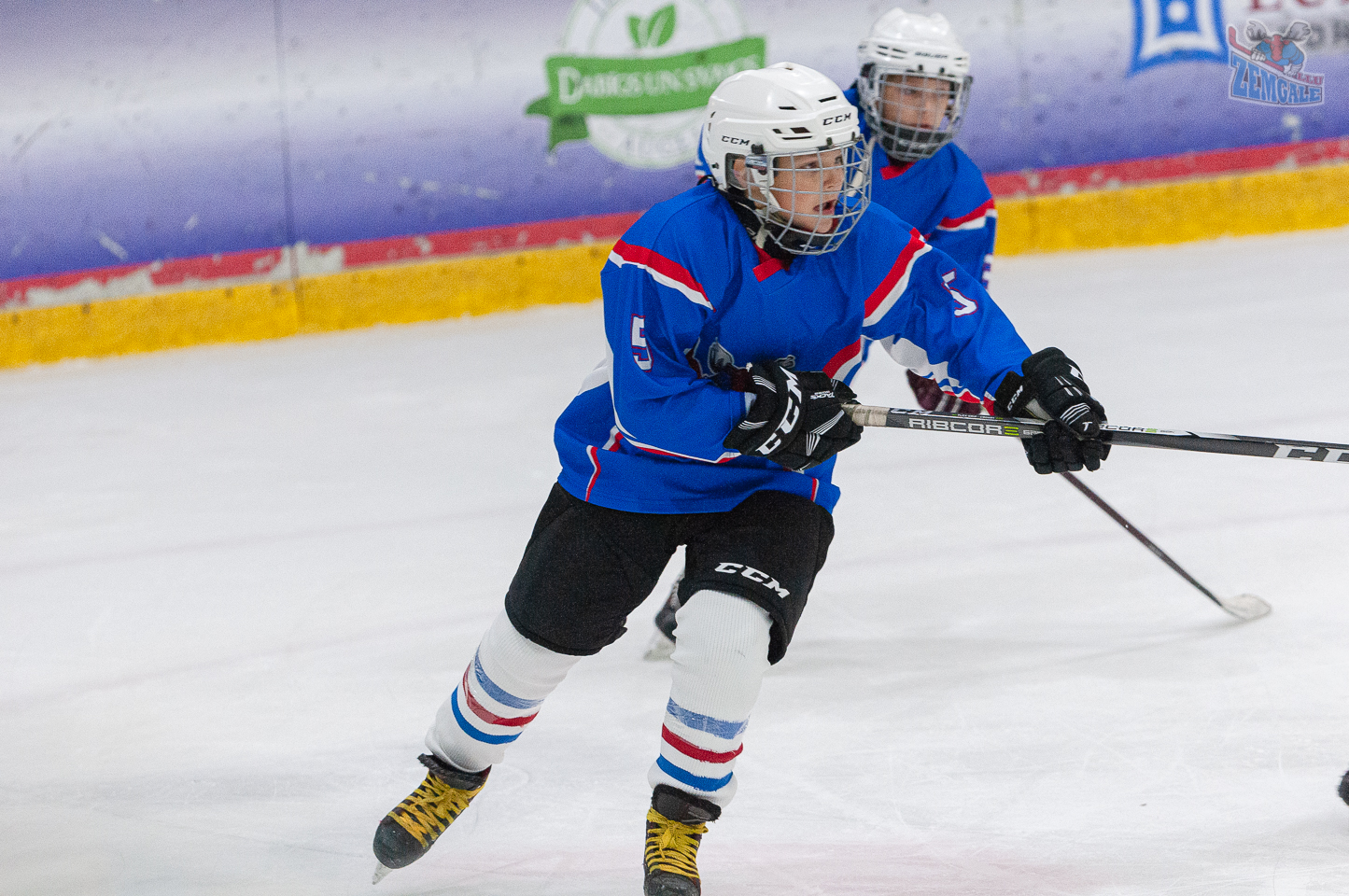 Jelgavas hokeja skola JLSS U11 B - DLSS LBJČH 13102019-12